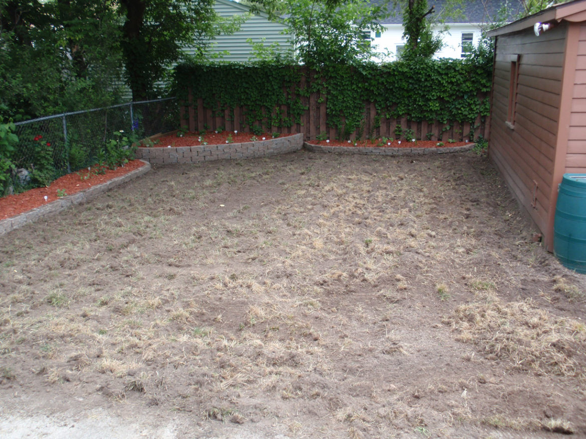 Backyard renovations